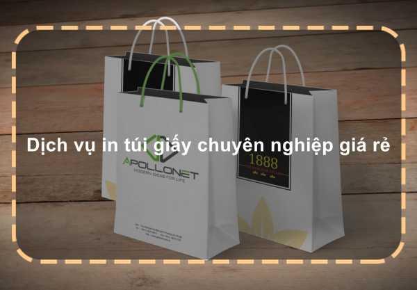 Dịch vụ in túi giấy chuyên nghiệp giá rẻ
